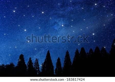 A line of evergreen trees against a deep blue starlit sky. - stock photo