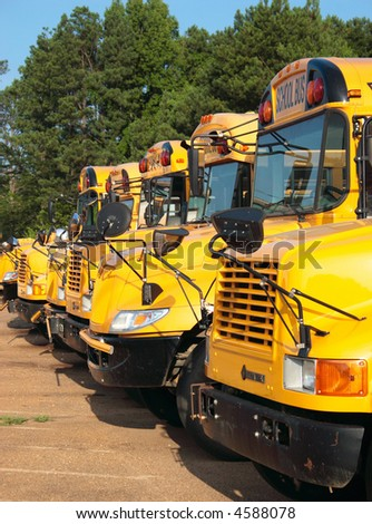 A line of school buses await their drivers. - stock photo
