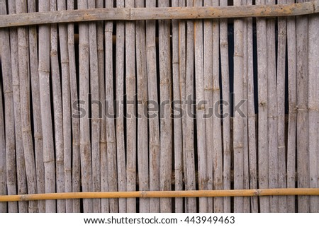 A line of yellow bamboo wall that fade and age by time.