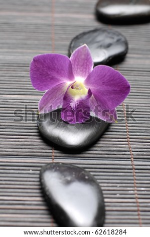A line Stone massage with pink orchid . Spa concept