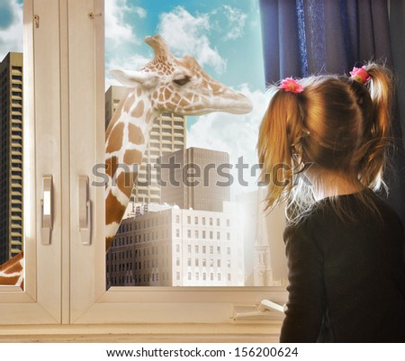 A little child is looking at a giraffe walking in the city through the girls window in her room for a nature or education concept. - stock photo