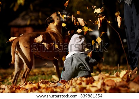 A little child playing with the dog in the autumn leaves