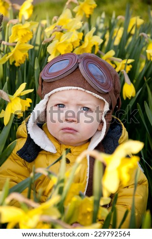 A little cute boy playing in a field of daffodils - stock photo