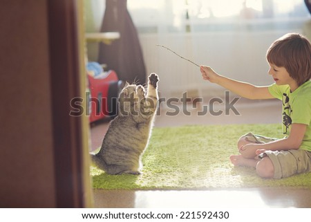 A little cute boy playing with cat  - stock photo