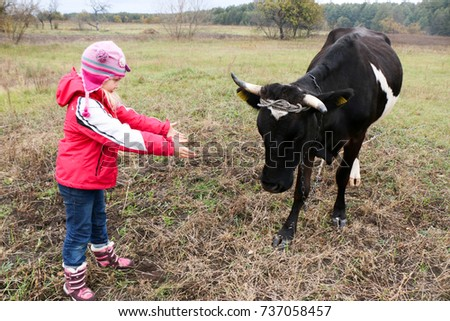 a little girl in a red jacket, a hat, jeans with a black cow. Autumn Landscape, Ukraine Sumy Region.