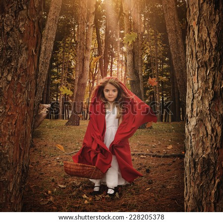A little girl is standing as little red riding hood in the forest with a wolf animal hiding behind trees for a fear or fairytale concept. - stock photo
