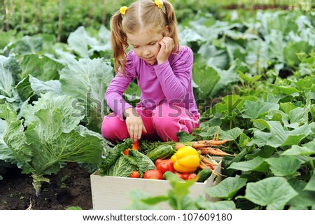 A little girl with a box of vegetables in the garden - stock photo