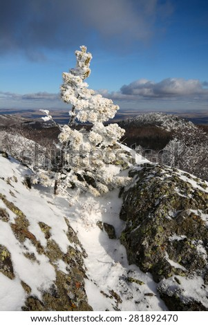 A little Pine covered with newly fallen snow on a mountain slope Sunduk among stones and rocks against the blue sky with dramatic heavy clouds, South Urals, Russia. - stock photo