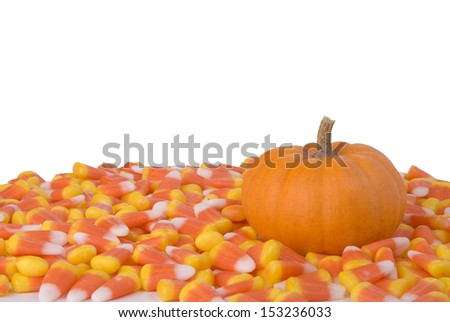 A little pumpkin surrounded by candy corn.