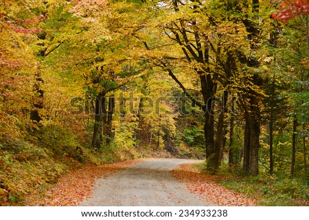 a local road in vermont with colorful autumn foliage - stock photo