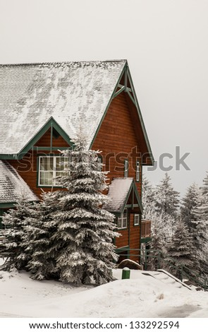 A log cabin during a snow storm with fresh snow covering the evergreens and roof. Snowshoe, WV