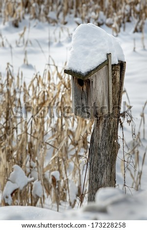 A lone bird house stands in fresh fallen snow near Rotterdam, New York. - stock photo