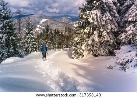 A lone hiker with a backpack walking along the trail in the winter mountains. View of snow-covered conifer trees and deep snow at sunshine. - stock photo