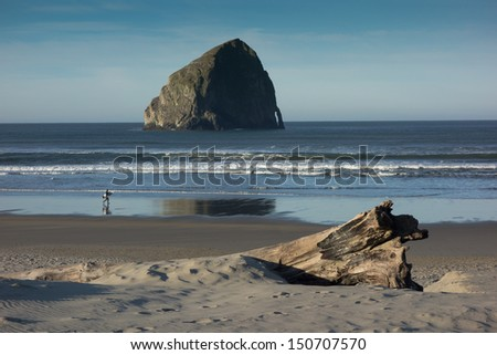 A lone surfer walks along an Oregon coastal beach in search of good waves - stock photo