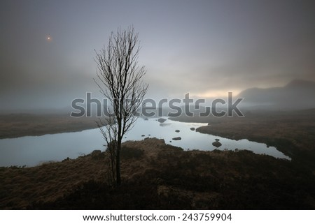 A lone tree looking over a misty Lochan in the evening twilight in the Scottish highlands with the crescent Moon shining in the sky. - stock photo