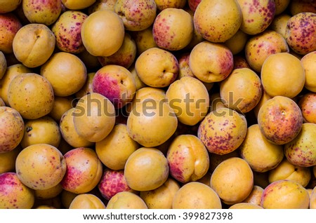 a lot of apricots as a background - stock photo