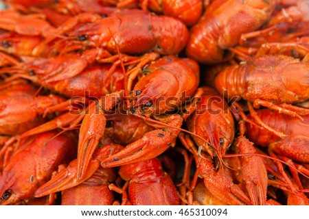A lot of boiled red crayfish closeup.