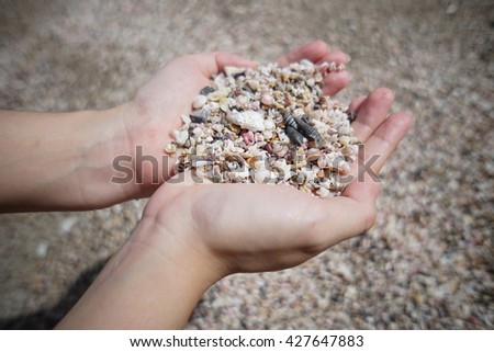 a lot of broken small corals, scrap of sea shell on two hand with blur background