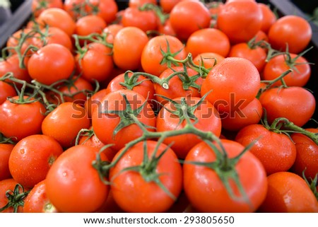 a lot of folded clean red tomatoes with green leafs