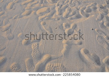 a lot of footprints in all directions in the sand of a beach