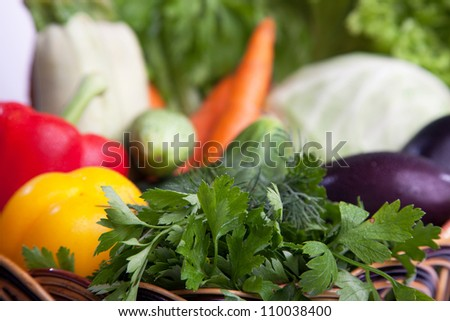 A lot of fresh, different vegetables in the basket. - stock photo
