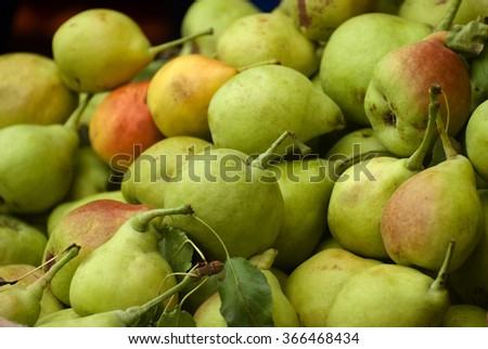a lot of fresh pears - stock photo