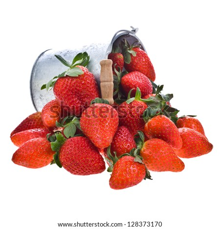 A lot of fresh strawberries and a pail . Isolated on a white background. - stock photo