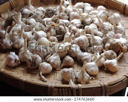 A lot of garlic in a bamboo basket        - stock photo
