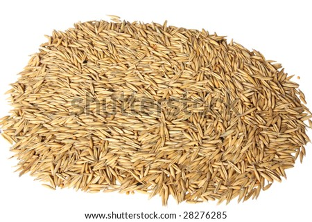 A lot of oats seeds isolated on white