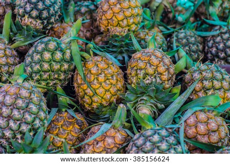A lot of pineapple fruit background selective focus - stock photo
