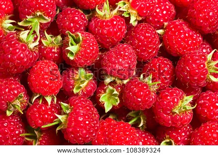 a lot of raspberries fruit
