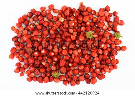 A lot of red juicy wild strawberry on white background