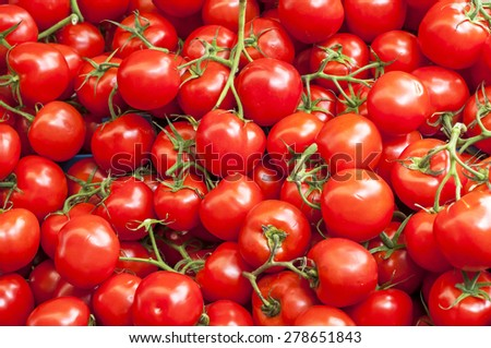 A lot of red ripe cherry tomatoes on the market on sunny day, close up