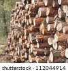 A lot of sawn timber lying in the woods - stock photo