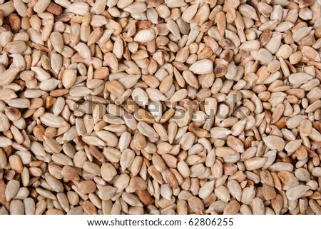 a lot of sunflower seeds. food background. - stock photo