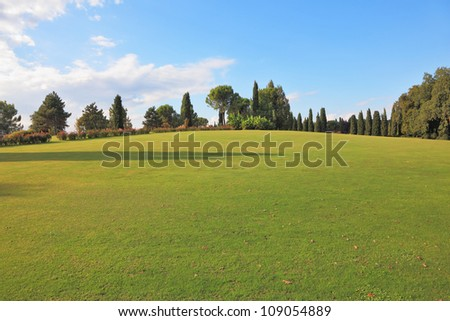 A lovely green lawn grass in a park in northern Italy