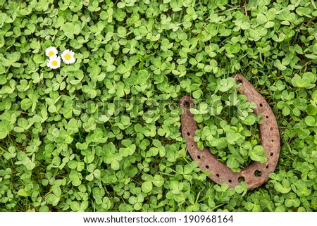 a Lucky charm on clover as a background - stock photo