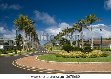 A luxurious residential street lined with palm trees.