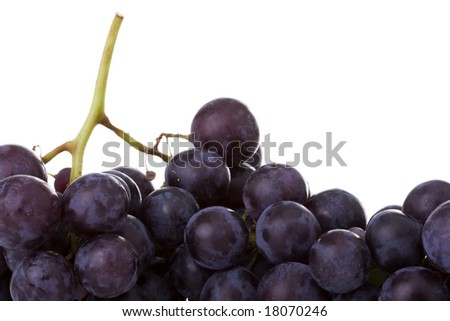 a macro detail of fresh grapes - stock photo