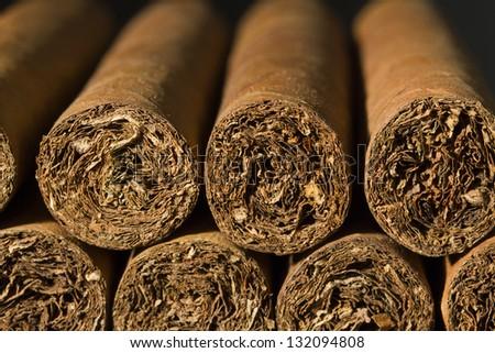 A macro photo of a bundle of cigars. - stock photo
