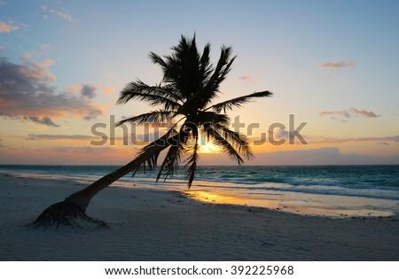 A magic sunrise along the beach of Tulum, Mexico.  - stock photo