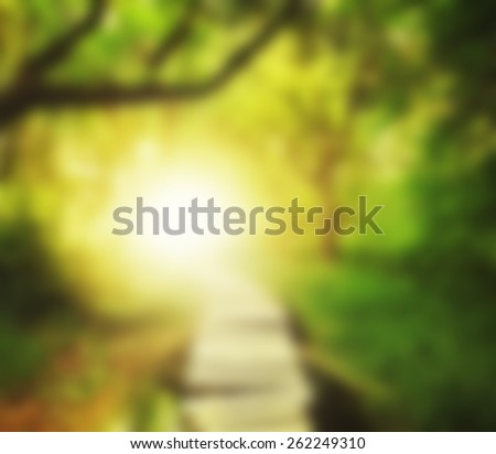 a magical bridge in a green lush forest blurred out so text can be placed over the image - stock photo
