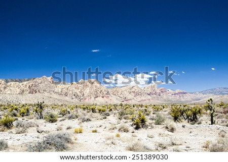 A majestic sandstone escarpment dominates the Red Rock Canyon National Conservation Area. Narrow canyons along the escarpment are popular day-hike destinations. - stock photo