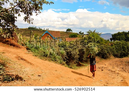 A man carrying some fresh crops on a local farm in Madagascar
