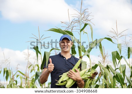 a man in a cornfield - stock photo