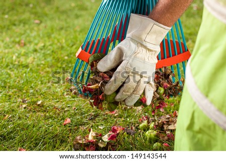 A man is preparing the leaves for the trash barrel. - stock photo