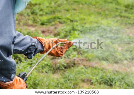 A man  is spraying herbicide in farm that has many weed - stock photo