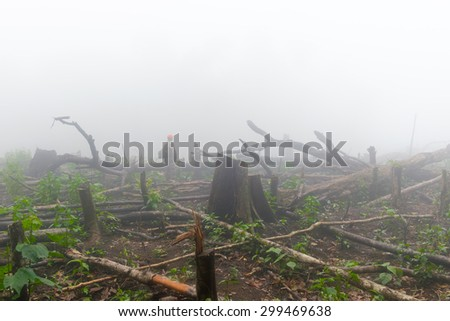 a man looking and deplore increse deforestation area for cultivate, Lao - stock photo