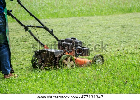 A man mowing grass in the garden