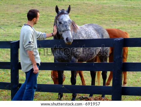 A man petting a horse - stock photo